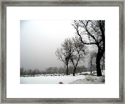 Ripple Effect Framed Print by Kimberly Mackowski