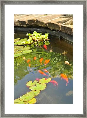 Ripple Effect  Framed Print by Puzzles Shum