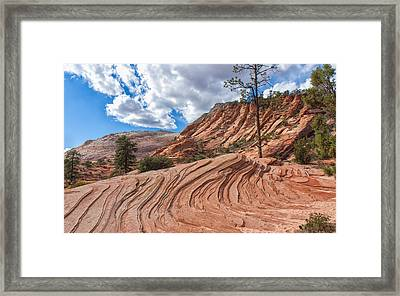 Rippled Rock At Zion National Park Framed Print by John M Bailey