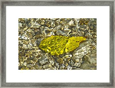 Rippled Framed Print
