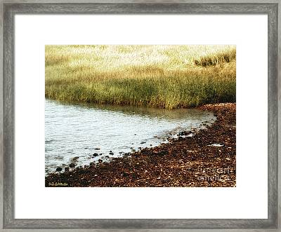 Rippled Water Rippled Reeds Framed Print by RC DeWinter