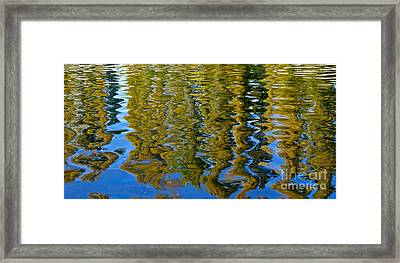 Ripples Framed Print by Alex Cassels