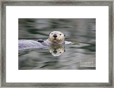 Ripples And Reflections Framed Print by Tim Grams