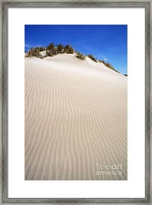 Ripples In Sand Dune Framed Print by Sami Sarkis