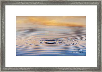 Ripples On A Still Pond Framed Print by Tim Gainey