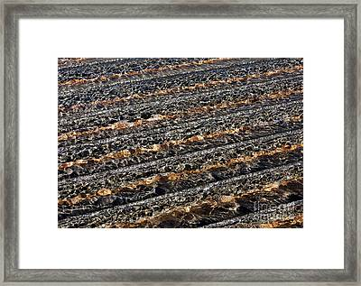 Ripples Framed Print by Steven Ralser