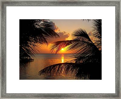 Rise And Behold Framed Print by Karen Wiles