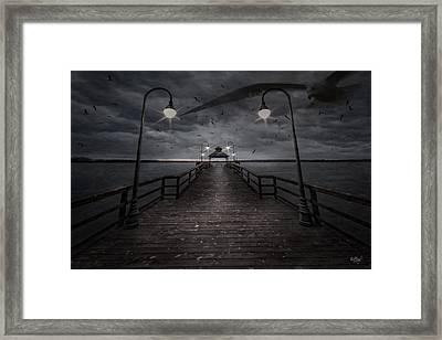 Rise And Fall Of The Seagull Framed Print by Everet Regal