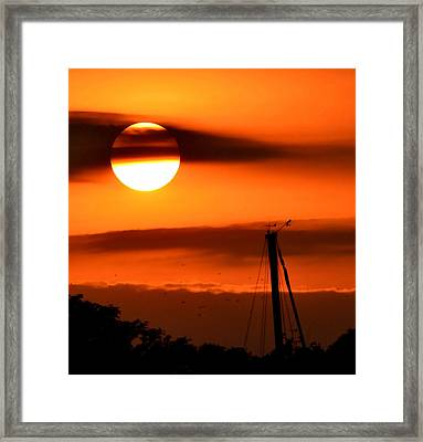 Rise And Shine Framed Print by Deena Stoddard