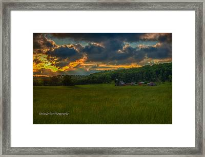 Rise And Shine Framed Print by Paul Herrmann