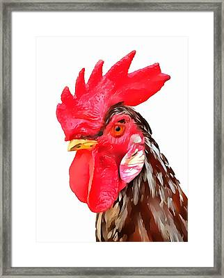 Rise And Shine Rooster Framed Print by Dan Sproul