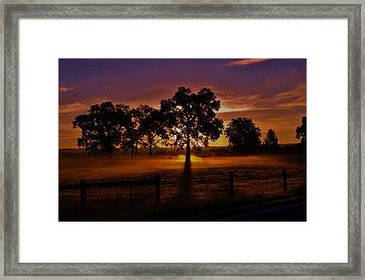 Rise Framed Print by Robert Geary