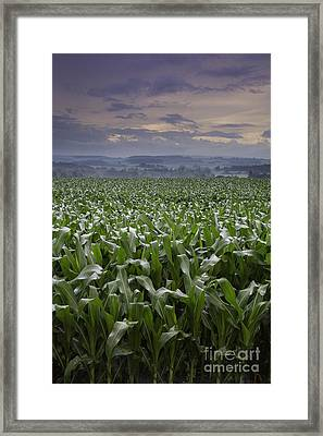 Rise To Meet The Day Framed Print