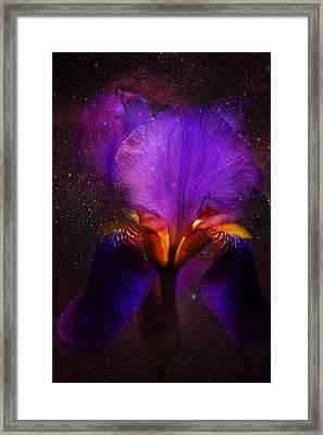 Risen From Stars. Cosmic Iris Framed Print
