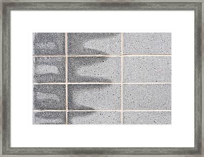 Rising Damp Framed Print by Tom Gowanlock
