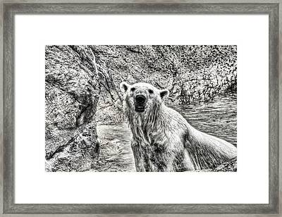 Framed Print featuring the photograph Rising From The Water by Dennis Baswell