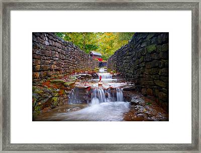 Rising From Whiskey Creek Framed Print by Wayne Stacy