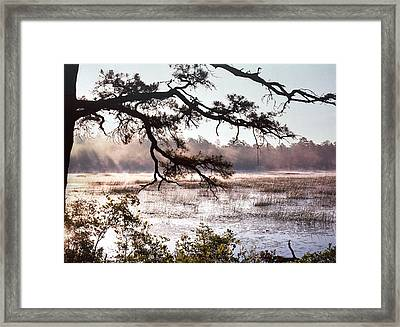 Rising Mist On Batsto Lake Framed Print