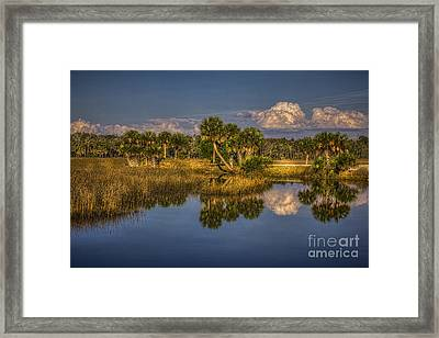 Rising Tide Framed Print by Marvin Spates