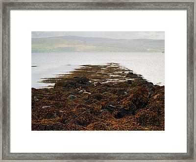 Rising Tide Framed Print by Steve Watson