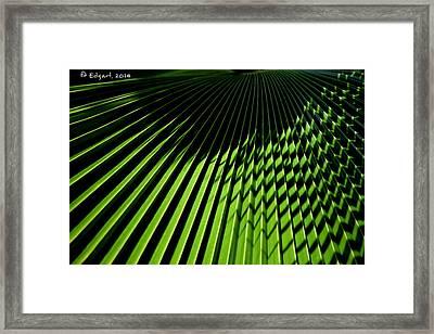 Ritmos Framed Print