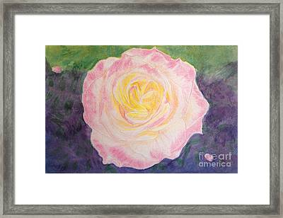 Ritzy Rose In Watercolor Pencil And Paint Framed Print by Conni Schaftenaar