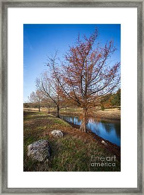 River And Winter Trees Framed Print
