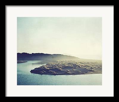 Sonoma County Olives Framed Prints