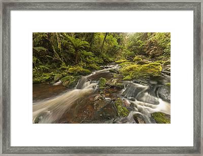 River At Mcleans Falls After Rains Framed Print