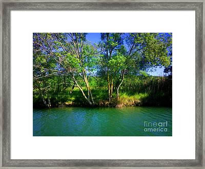 River Beauty Framed Print