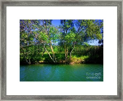 River Beauty Framed Print