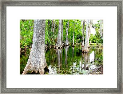 River Bend  Framed Print by Carey Chen