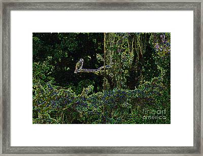 River Bird Of Prey Framed Print