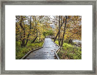 River Boardwalk Framed Print