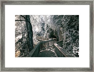 River Boardwalk Framed Print