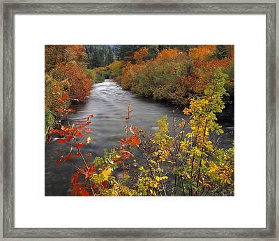 River Color Framed Print by Leland D Howard