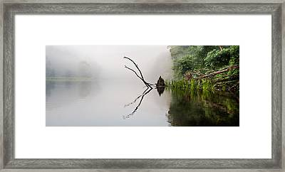 River Crabs Framed Print