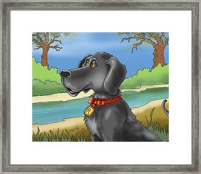 River Dog Framed Print by Hank Nunes