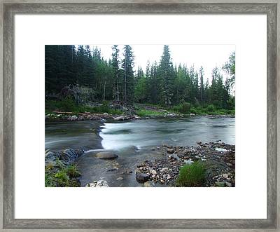 Trout Stream 001 Framed Print