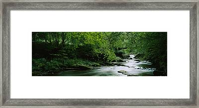 River Flowing In The Forest, Aberfeldy Framed Print by Panoramic Images