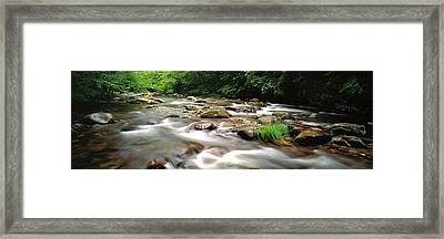 River Flowing Through A Forest, Little Framed Print by Panoramic Images