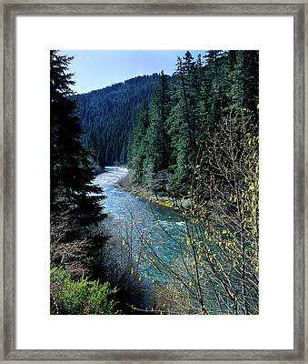 River Flowing Through A Forest, North Framed Print