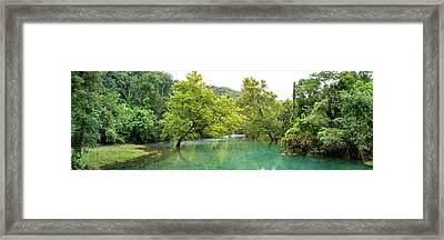 River Flowing Through A Forest, Ozark Framed Print by Panoramic Images