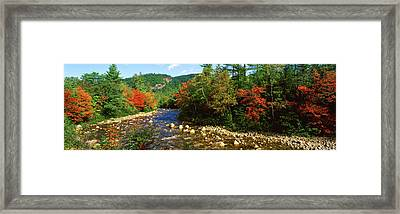 River Flowing Through A Forest, Swift Framed Print by Panoramic Images