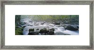 River Flowing Through The Forest Framed Print by Panoramic Images