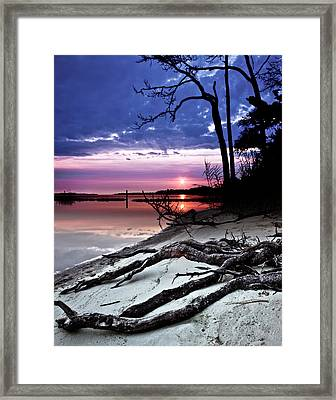 Framed Print featuring the photograph River Forest Sunset Exposed Twisted Tree Roots Beach Art Prints by Eszra
