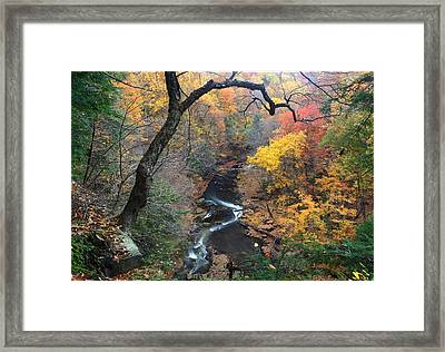 River Gorge Framed Print by Daniel Behm