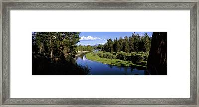 River In A Forest, Don Mcgregor Framed Print by Panoramic Images