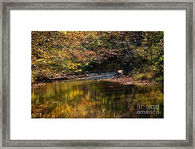 Framed Print featuring the photograph River In Autumn by Lisa L Silva