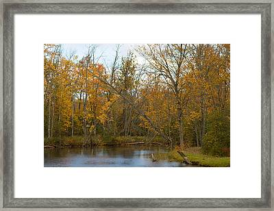 River In Autumn Framed Print by Rhonda Humphreys